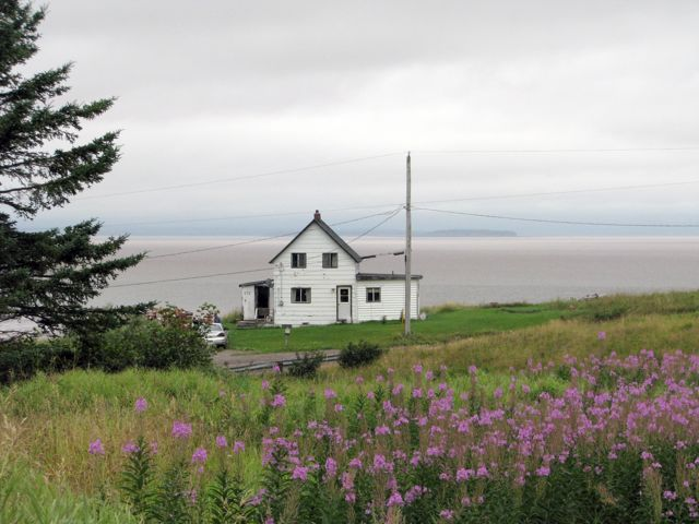 Unexcused absences nova scotia he said unexcused absences for Minimalist house bay of fundy