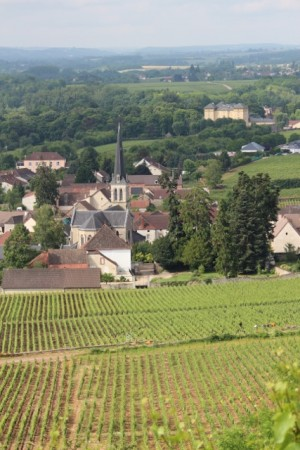 Santenay (foreground) for photos, Cheilly (background) for wine