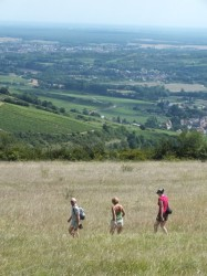 Hiking high above Santenay