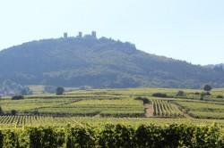 Trois Château above Eguisheim