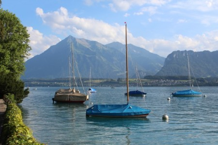 Sailboats on Thunersee