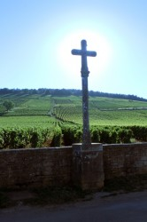 The famous cross marking the Romanée-Conti plot, most expensive wine in the world