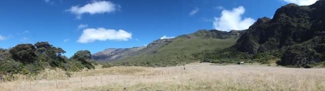The area around Paliku cabin