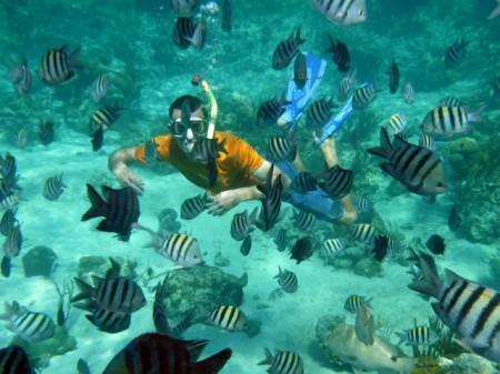 "Clear water at the ""Aquarium"""