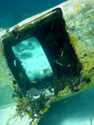 One of many plane wrecks in the Exumas