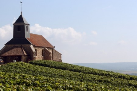 Mutigny has a church, but the real religion is winemaking