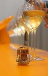 More orange - Champagne tasting at Veuve Cliquot