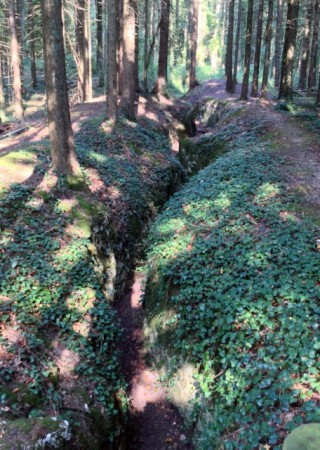 German trench line in the woods above St Mihiel