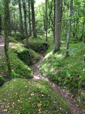 French trench line in the Apremont Forest