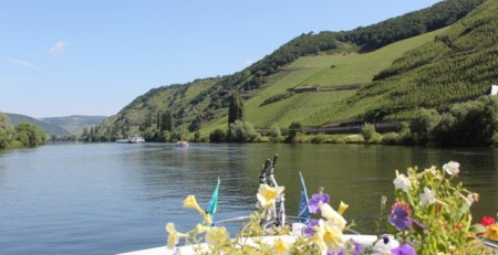 The Mosel River
