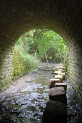 How to get the hiking trail through the culvert
