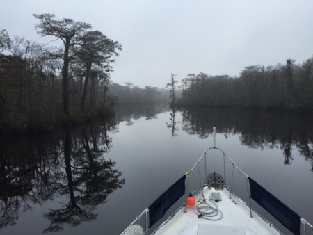 The beautiful and mysterious Waccamaw River