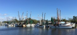 Fishing fleet in Brunswick, Georgia