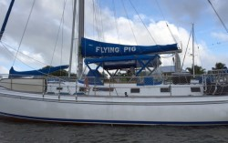 "The ""Flying Pig"" of Vero Beach, not to be confused with the swimming pigs of the Bahamas"