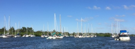 The packed mooring field at Vero Beach City Marina