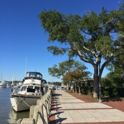 Docked in Beaufort, SC