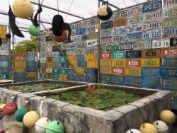 A combination fish-pond and license plate museum