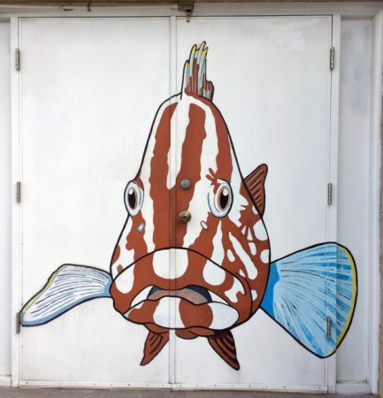 Side door at the fish wholesaler