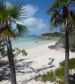 Dove Cay