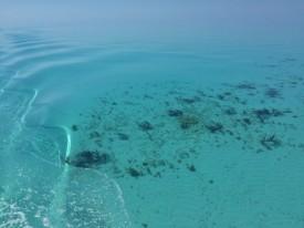 Motoring through still water