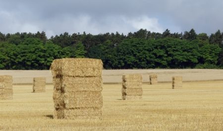 Straw bales somewhere in Lorraine