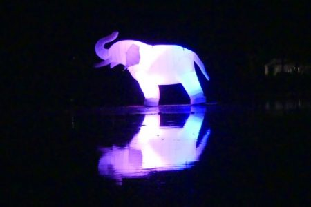 "The cool ""LED-illuminated inflatable elephant"" in Chalons"