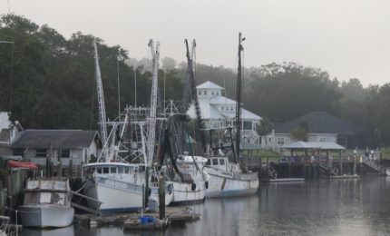 St. Mary's Boat Services, Georgia